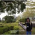 2013-12-台糖牧野25.jpg