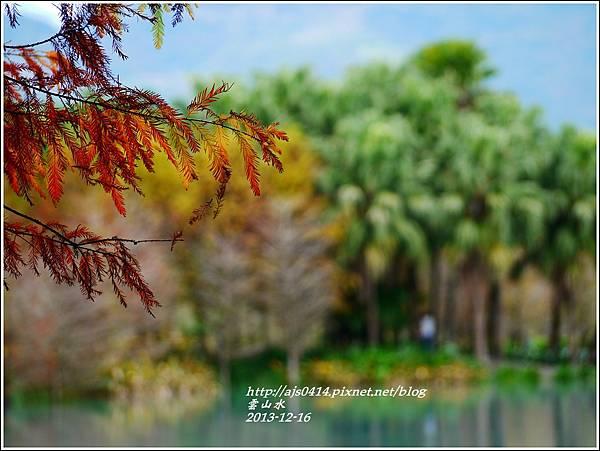 2013-12-雲山水15.jpg
