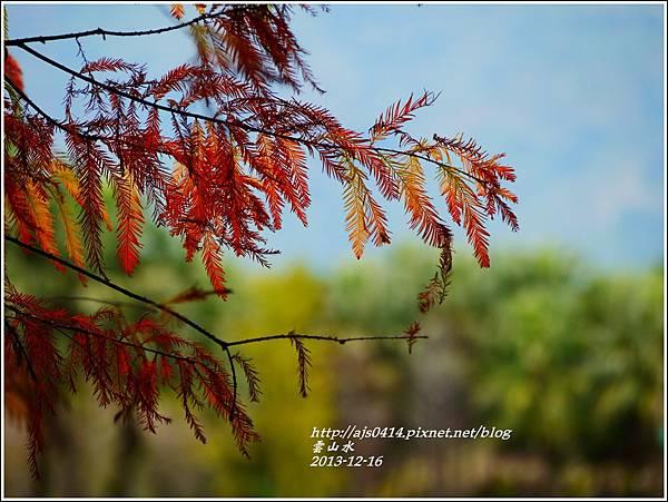 2013-12-雲山水16.jpg