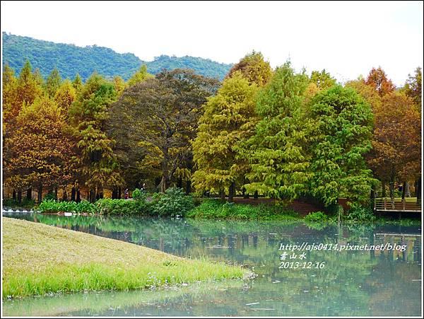 2013-12-雲山水20.jpg