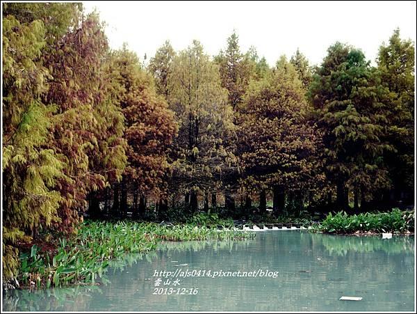 2013-12-雲山水25.jpg