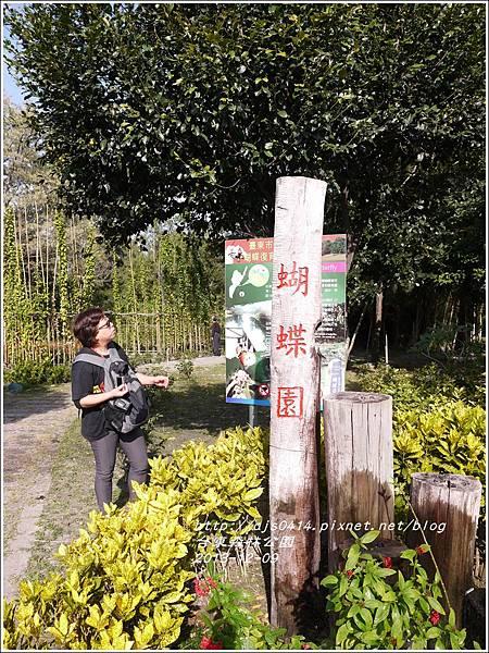 2013-12-台東森林公園5.jpg