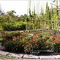 2013-12-台東森林公園10.jpg
