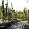 2013-12-台東森林公園11.jpg
