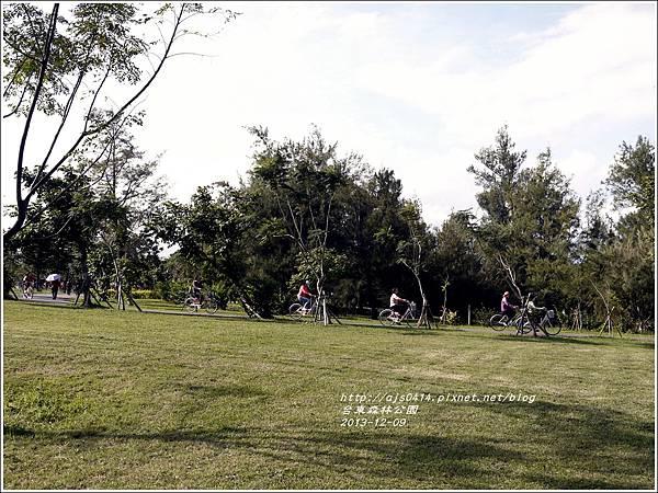 2013-12-台東森林公園14.jpg