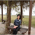 2013-12-大樹舊鐵橋濕地13.jpg