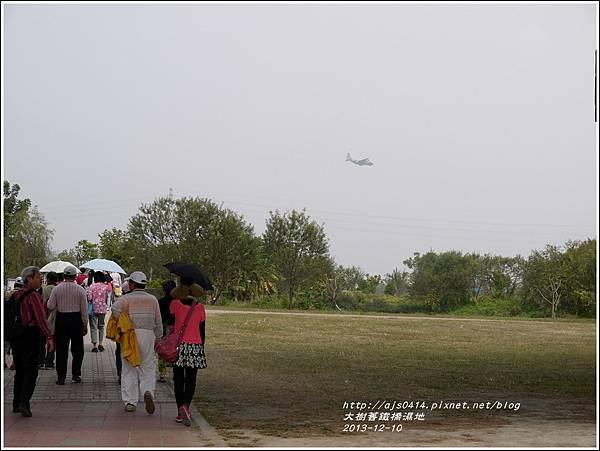 2013-12-大樹舊鐵橋濕地7.jpg