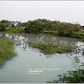 2013-12-大樹舊鐵橋濕地10.jpg
