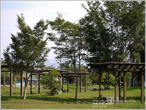2014-01-小公園落羽松之美18.jpg