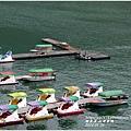 2014-01-鯉魚潭(紅面番鴨)19.jpg