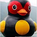 2014-01-鯉魚潭(紅面番鴨)18.jpg