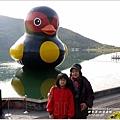 2014-01-鯉魚潭(紅面番鴨)6.jpg