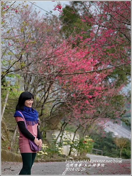 2014-01-玉山神學院春櫻30.jpg