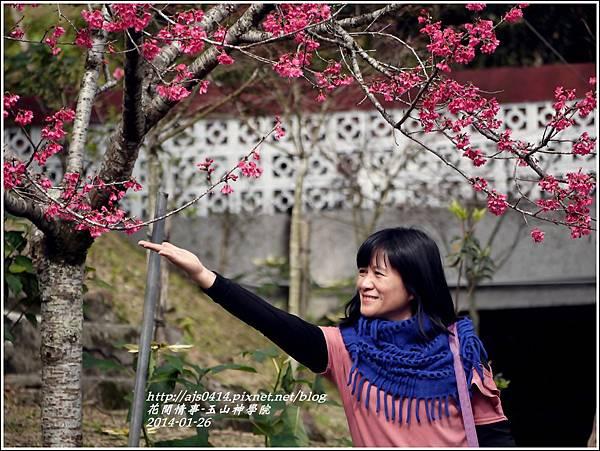 2014-01-玉山神學院春櫻28.jpg