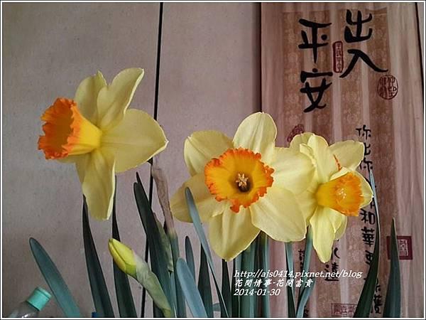 2014-01-花開富貴6.jpg