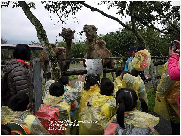 2014-04-兆豐農場8.jpg