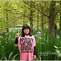 2014-04-雲山水鳶尾季12.jpg