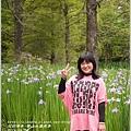 2014-04-雲山水鳶尾季28.jpg