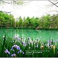 2014-04-雲山水鳶尾季30.jpg