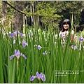 2014-04-雲山水鳶尾季33.jpg