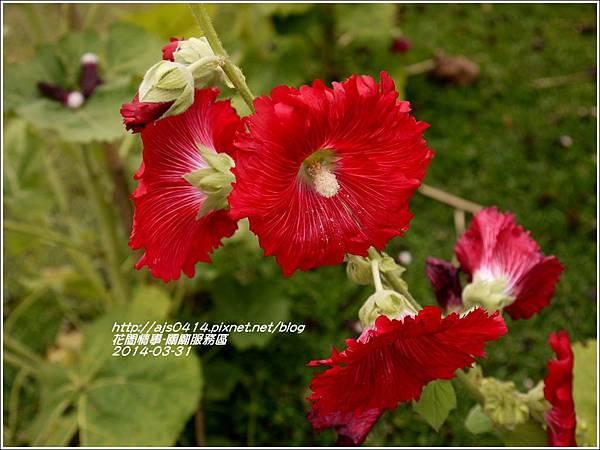 2014-04-關廟服務區11.jpg