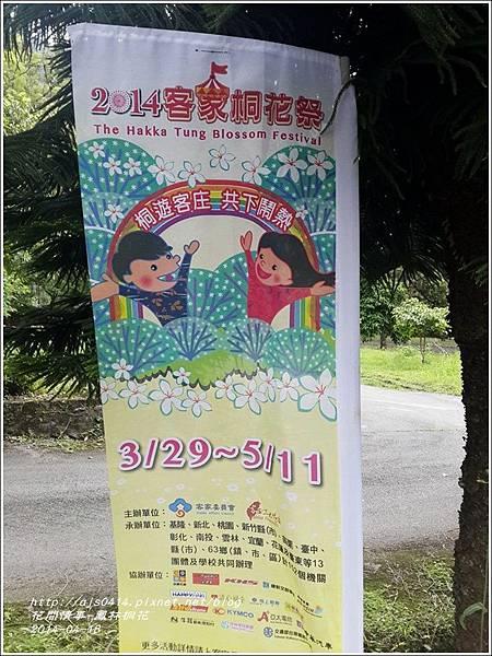 2014-04-鳳林桐花21.jpg