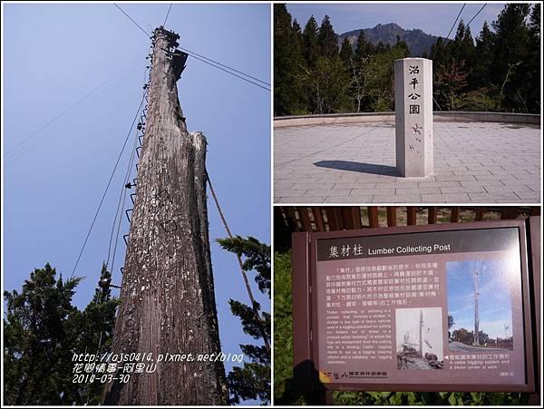 2014-04-阿里山1.jpg