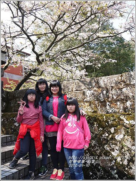 2014-04-阿里山7.jpg