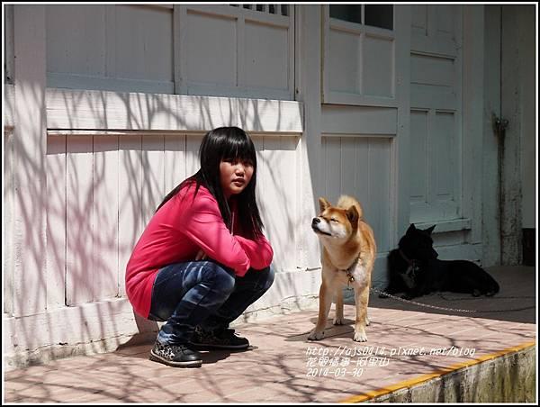2014-04-阿里山20.jpg