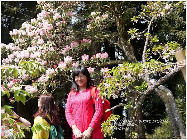2014-04-阿里山23.jpg