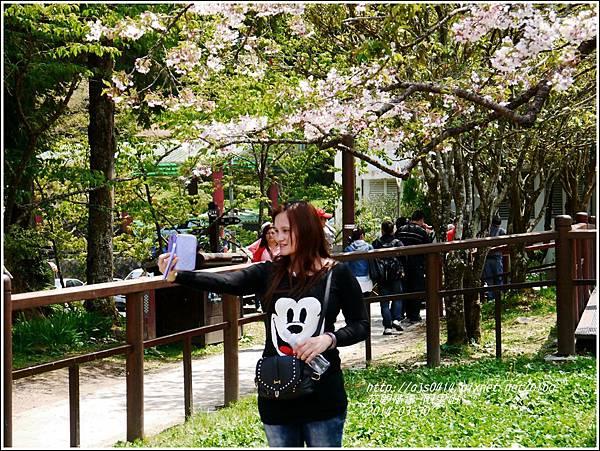 2014-04-阿里山28.jpg
