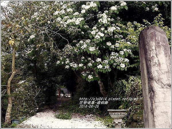 2014-04-4月雪(嬉桐趣)9.jpg