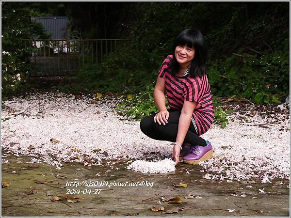 2014-04-4月雪(嬉桐趣)30.jpg