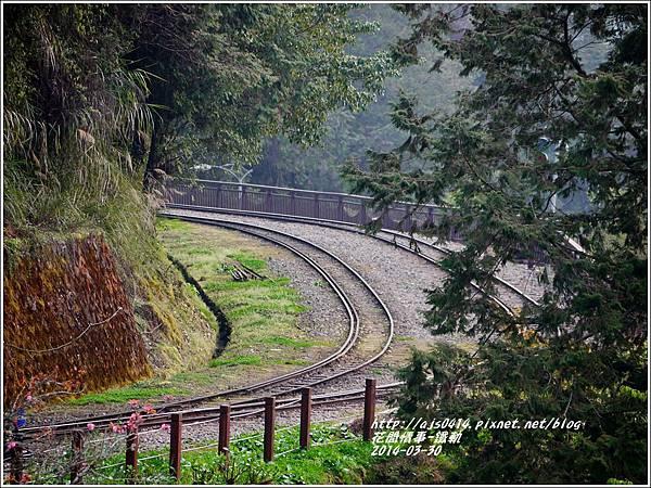 2014-04-阿里山日落1.jpg