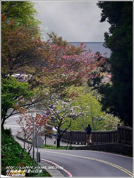 2014-04-阿里山日落7.jpg