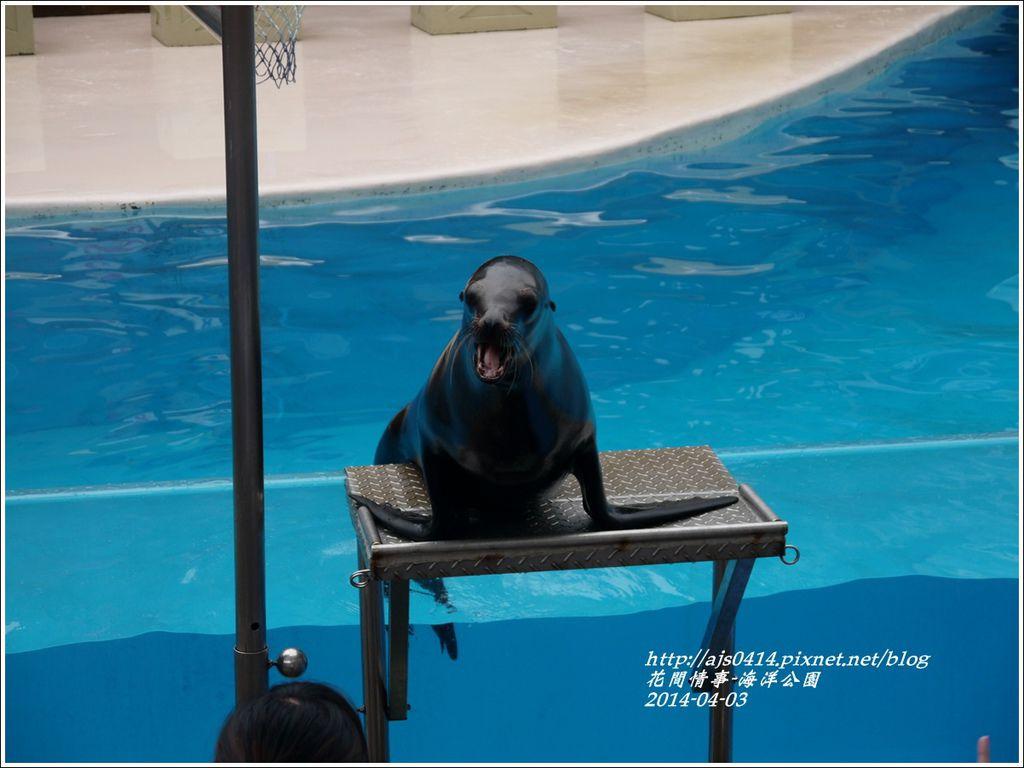 2014-04-花蓮海洋公園16.jpg