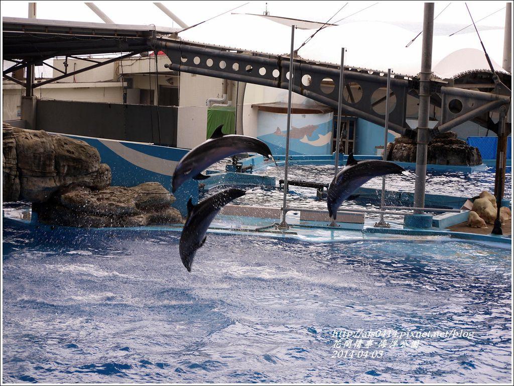 2014-04-花蓮海洋公園13.jpg