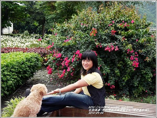 2014-05-秀姑戀溪泛舟遊客中心(鐵炮百合花)23.jpg