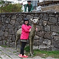 2014-04-塔塔加遊客中心7.jpg
