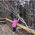 2014-04-塔塔加遊客中心17.jpg