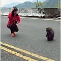 2014-04-新中橫公路4.jpg