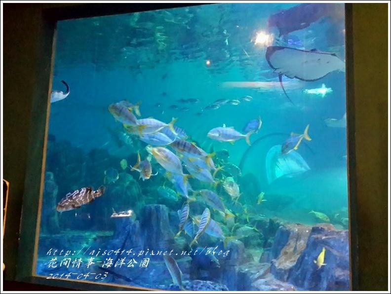 2014-04-花蓮海洋公園64.jpg