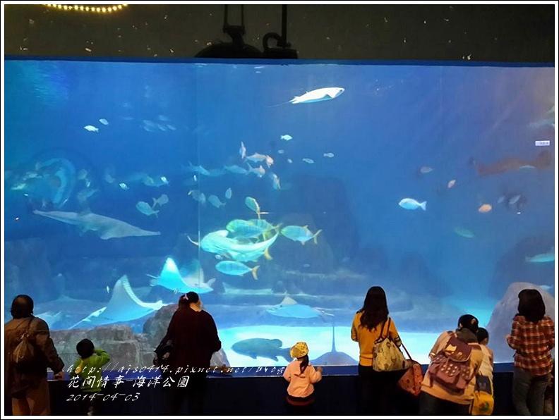 2014-04-花蓮海洋公園63.jpg