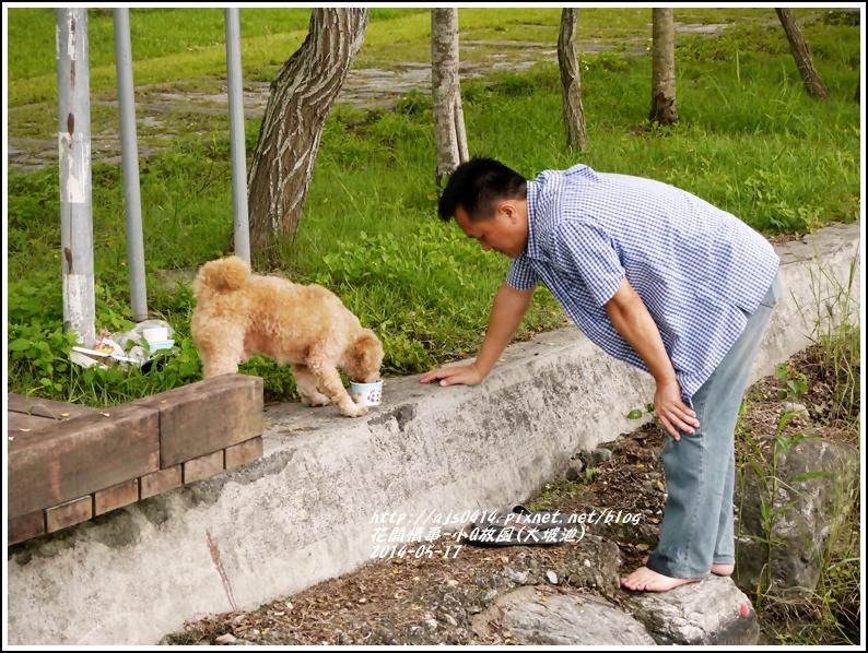 2014-05-小Q放風日(大坡池)2.jpg