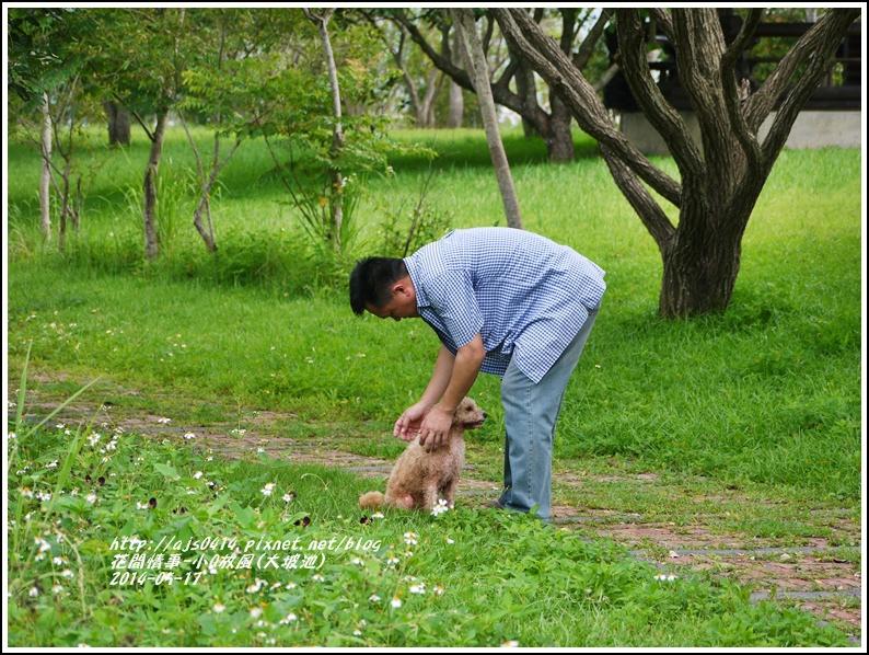 2014-05-小Q放風日(大坡池)10.jpg