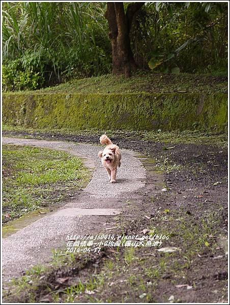 2014-05-小Q放風日(羅山大魚池)3.jpg