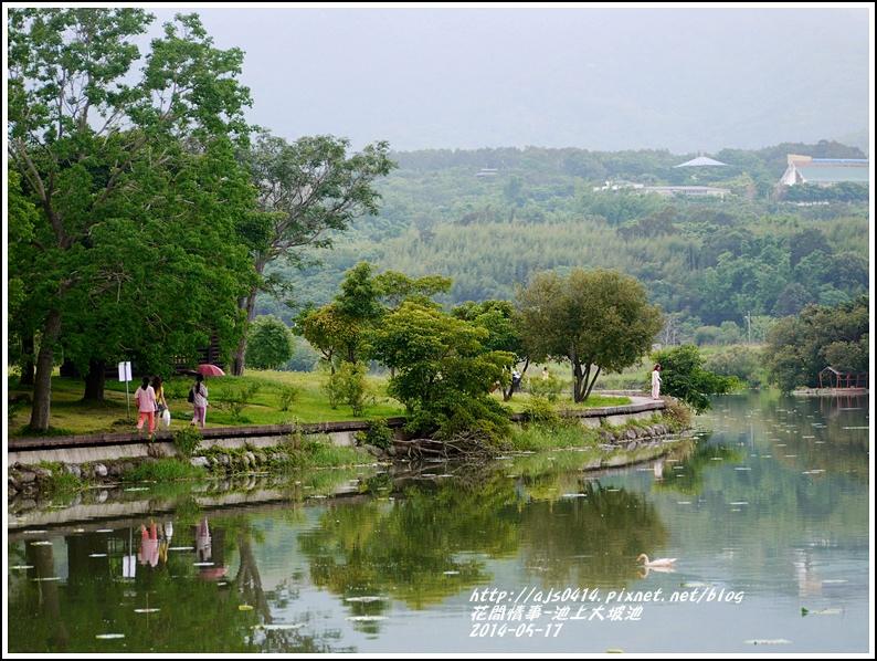 2014-05-池上大坡池2.jpg