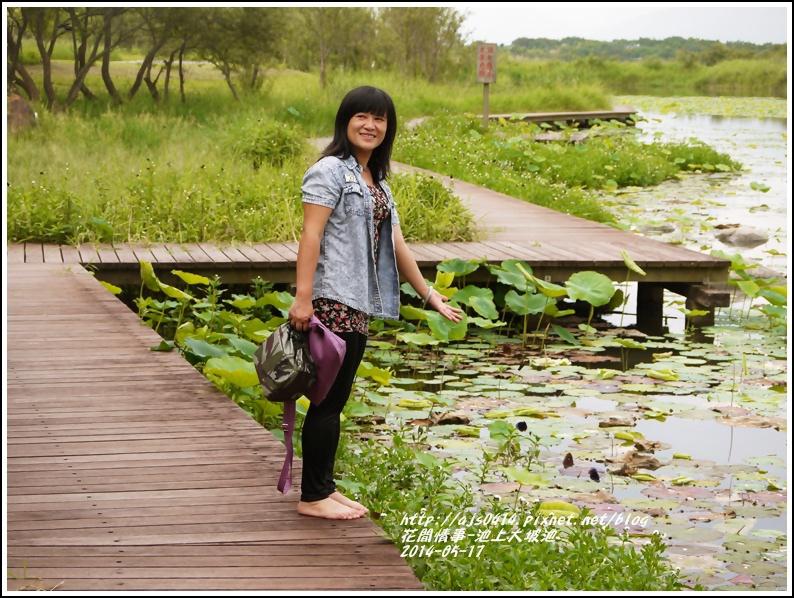 2014-05-池上大坡池11.jpg