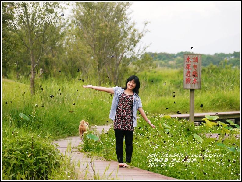 2014-05-池上大坡池12.jpg