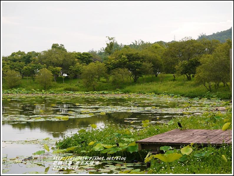 2014-05-池上大坡池17.jpg